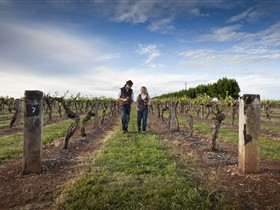 Coonawarra Wineries Walking Trail - Accommodation Cairns