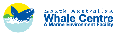 South Australian Whale Centre - Accommodation Cairns