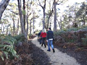Bridport Walking Track - Accommodation Cairns