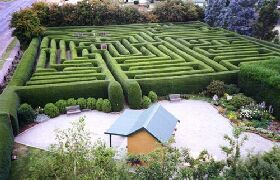 Westbury Maze and Tea Room - Accommodation Cairns