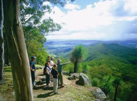 Gold Coast Hinterland Great Walk - Accommodation Cairns