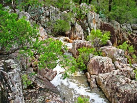 Crows Nest National Park - Accommodation Cairns
