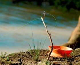 Charleville - Mangalore Warrego River Fishing Spot - Accommodation Cairns