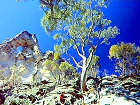 Mount Moffatt Section - Carnarvon National Park - Accommodation Cairns