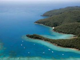 Butterfly Bay - Hook Island - Accommodation Cairns