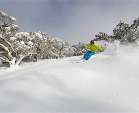 Mt Buller and Mt Stirling Alpine Resort - Accommodation Cairns