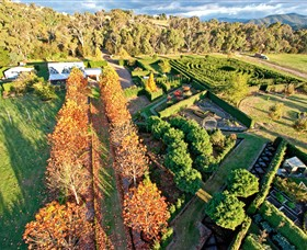 High Country Maze - Accommodation Cairns