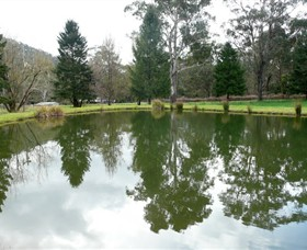 Mountain Fresh Trout and Salmon Farm - Accommodation Cairns