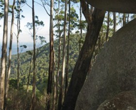 Gulaga National Park - Accommodation Cairns