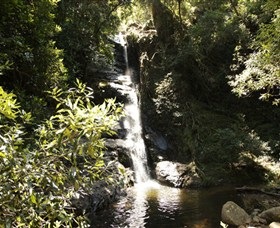 Macquarie Pass National Park - Accommodation Cairns