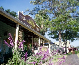 Passionfish Candles - Accommodation Cairns