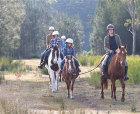 Horse Riding at Oaks Ranch and Country Club - Accommodation Cairns