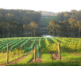 Tilba Valley Wines - Accommodation Cairns