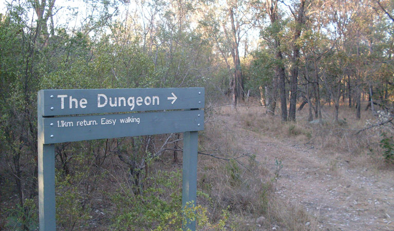 Dungeon lookout - Accommodation Cairns