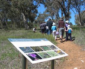 South Gundagai Woodlands Walk