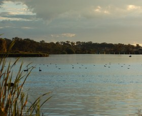 Lake Inverell Reserve - Accommodation Cairns