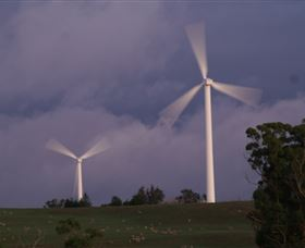 Crookwell Wind Farm - Accommodation Cairns