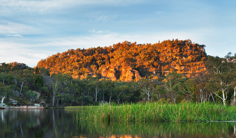 Wollemi National Park - Accommodation Cairns