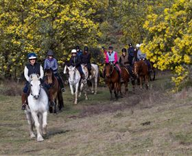 Burnelee Excursions on Horseback - Accommodation Cairns