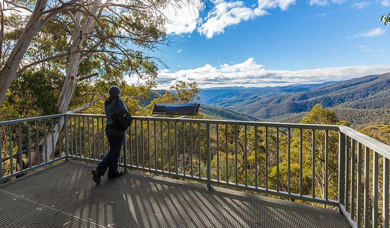 Wallace Creek lookout - Accommodation Cairns