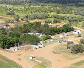 Blackall Saleyards - Accommodation Cairns