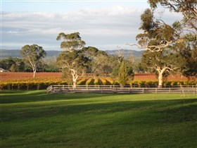 Top Note Vineyard - Accommodation Cairns