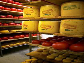 Alexandrina Cheese Company - Accommodation Cairns