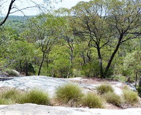 White Mountains National Park - Accommodation Cairns