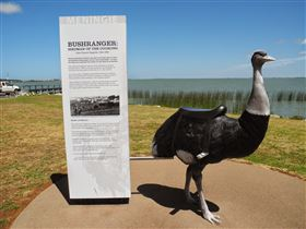 Birdman of the Coorong - Accommodation Cairns