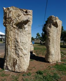 Fossilised Forrest Sculptures - Accommodation Cairns