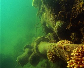 Wreck Diving at Magnetic Island - Accommodation Cairns