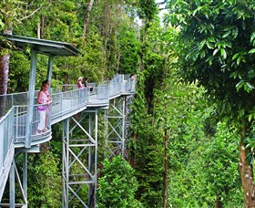 Mamu Tropical Skywalk - Accommodation Cairns