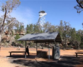 Pilliga Forest Lookout Tower - Accommodation Cairns