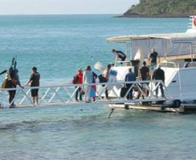 Scuba Diving on Keswick Island - Accommodation Cairns