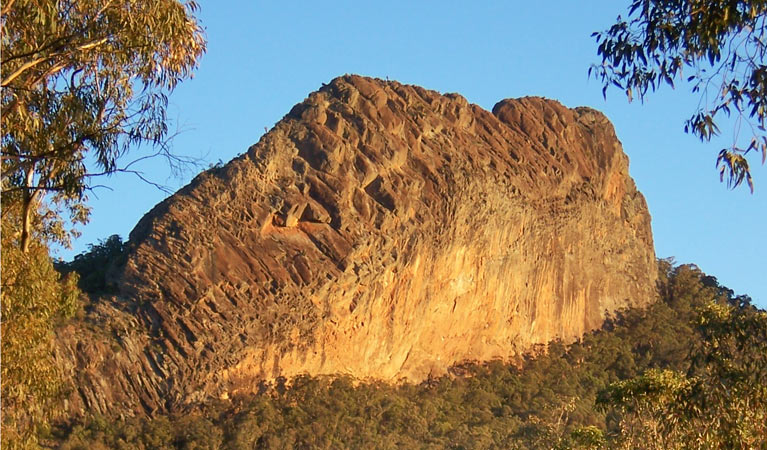 Kaputar scenic drive - Accommodation Cairns