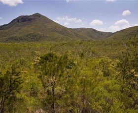 Kutini-Payamu Iron Range National Park CYPAL - Accommodation Cairns