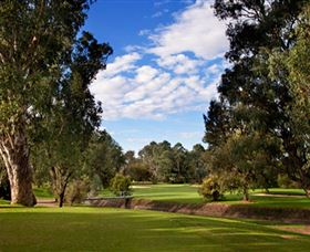 Commercial Golf Course - Accommodation Cairns