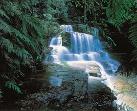 Leura Cascades - Accommodation Cairns