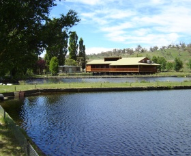 Gaden Trout Hatchery - Accommodation Cairns