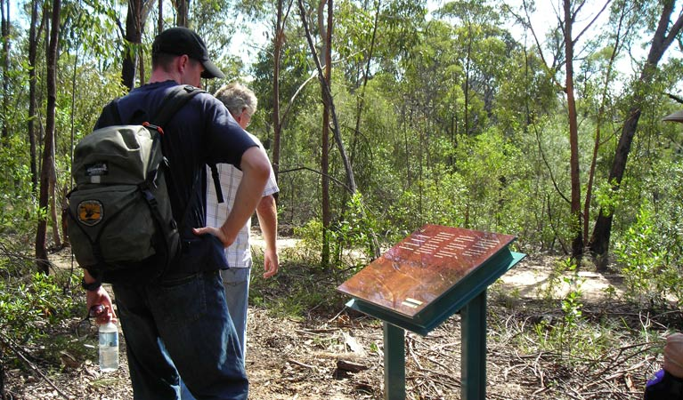 Finchley cultural walk - Accommodation Cairns