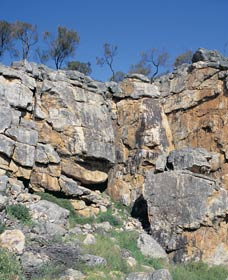 Badgingarra Nature Trail - Accommodation Cairns