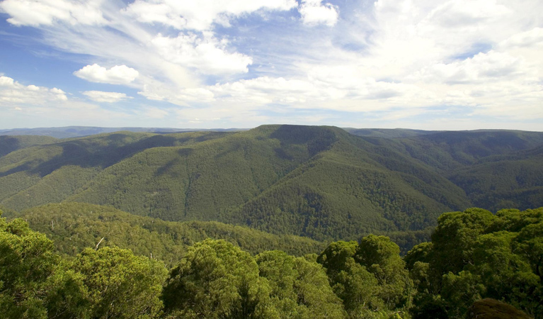 Barrington Tops National Park - Accommodation Cairns