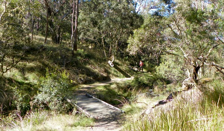 Wollomombi walking track - Accommodation Cairns