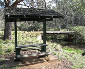 Barrington Tops State Forest - Accommodation Cairns
