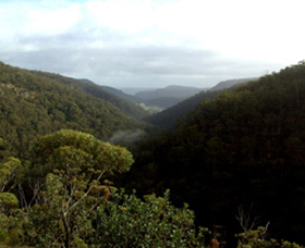 Nattai Gorge Lookout - Accommodation Cairns