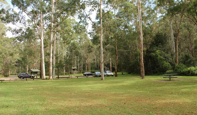 Mill Creek picnic area - Accommodation Cairns