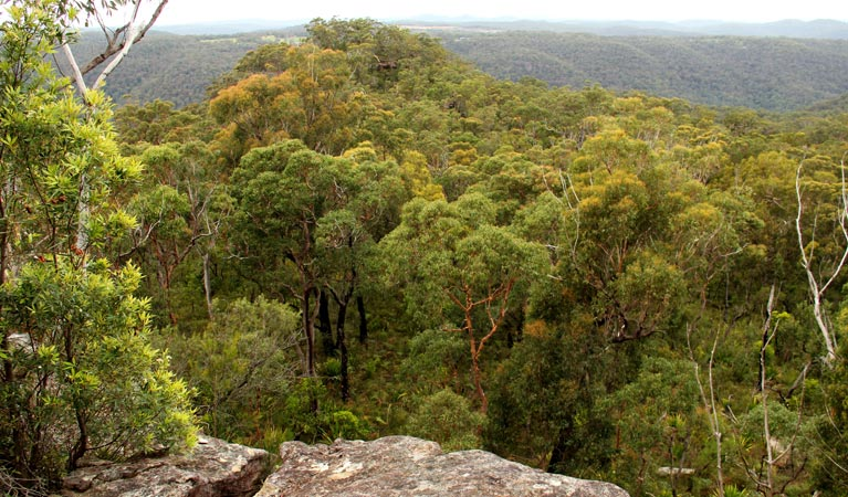 Mount Olive lookout - Accommodation Cairns