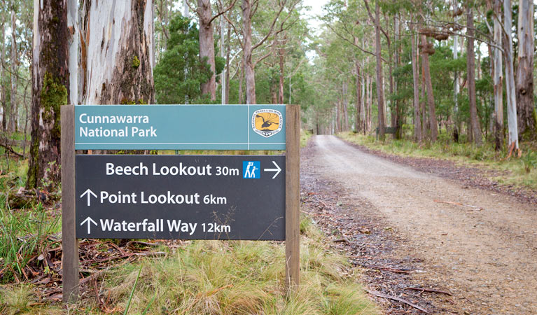 Beech lookout - Accommodation Cairns
