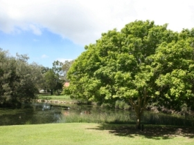 Hervey Bay Botanic Gardens - Accommodation Cairns