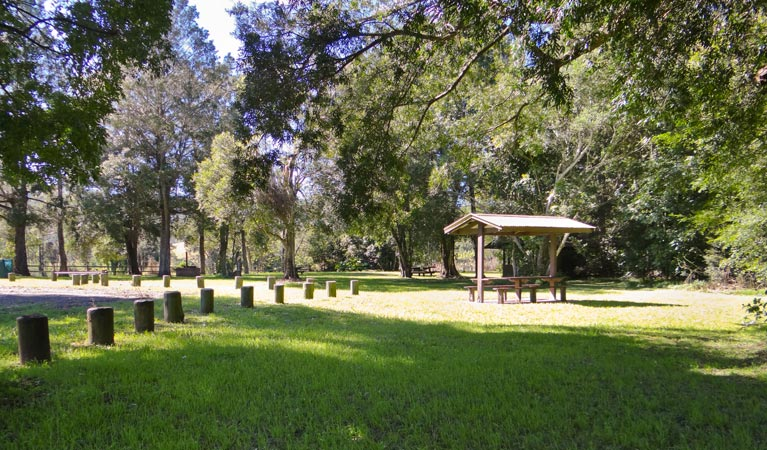 Moore Park picnic area - Accommodation Cairns